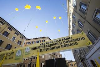 """Latte, Salvini: """"Soluzione entro 48 ore"""". Pd: """"Ora indagine su pratiche sleali di mercato"""""""