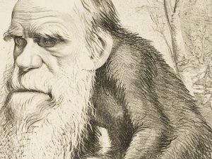 Una delle caricature di Charles Darwin più famose: lo scienziato venne raffigurato con il corpo di una scimmia.