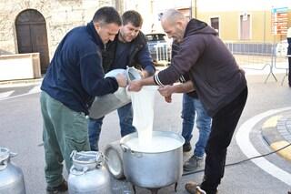 La protesta per il latte, cosa sta succedendo in Sardegna