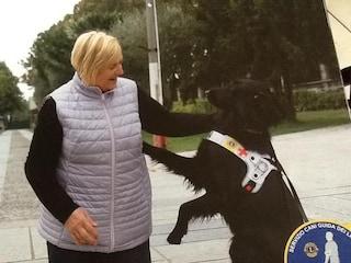 """Loretta, ipovedente, minacciata sul bus col suo cane """"impuro"""": """"Scendete o lo butto giù"""""""