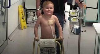 Il piccolo Oscar come Alex, in migliaia donano per salvare la vita al bimbo di 5 anni