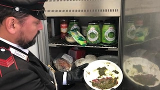 Torino, topi e parassiti nelle cucine di una trattoria di Cantoira: titolare denunciato