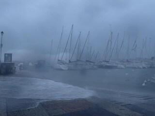 """Maltempo, pioggia e neve mettono in ginocchio il Nord Est: """"Un'apocalisse"""""""