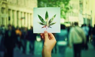 Cannabis, cosa ha portato la legalizzazione negli Usa? Meno reati, più lavoro e più soldi pubblici