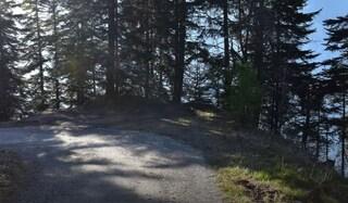 Svizzera, dramma durante gita scolastica sui monti: 14enne scivola, cade nel dirupo e muore