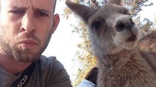 Umberto, 32enne di Moncalieri, ucciso da un'auto pirata a Brisbane, in Australia