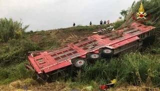 Grosseto, camion carico di vitelli si ribalta sull'Aurelia: morti 30 animali