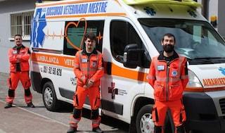 Dall'amore per gli animali all'ambulanza veterinaria, l'impresa di tre amici veneziani
