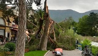 Bufera a Merano, crolla un albero. Gravissimi una donna e il figlio di tre anni