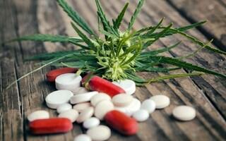 La cannabis arma efficace anche contro l'eroina e l'overdose da oppiacei