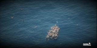 """Sea Watch: """"Gommone in avaria a largo della Libia, alta probabilità di dispersi e morti annegati"""""""