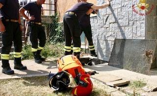 Cuneo: bimbo di 2 anni cade nella buca mentre gioca, per salvarlo rimane bloccata anche la madre
