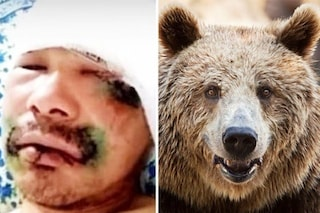 Siberia. Attaccato da un orso bruno di 600 kg, si salva strappandogli la lingua a morsi