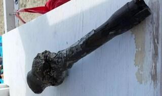 Bimba scava una buca in spiaggia e trova bomba della II Guerra Mondiale: salvata dal bagnino
