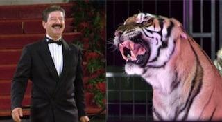 Domatore ucciso a Bari: chi era Ettore Weber, sbranato dalle tigri al Circo Orfei