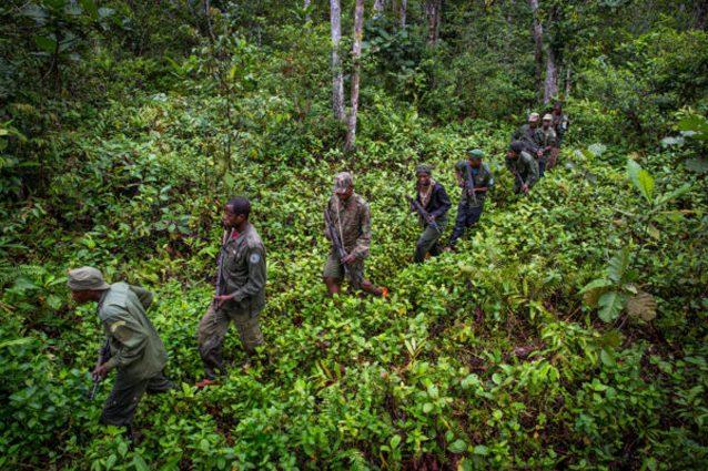 Un gruppo di ranger del Parco nazionale del Salonga co–gestito da Wwf nella Repubblica Democratica del Congo (Karine Aigner/Salonga National Park)