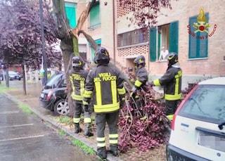 Tromba d'aria a Parma: colpita da un ramo mentre giocava a carte con gli amici, donna muore