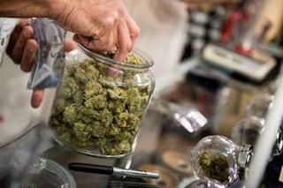 """Cannabis light, rivenditori contro sentenza della Cassazione che vieta commercio: """"Andiamo avanti"""""""