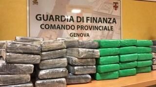 Genova, sequestrati 538 chili di cocaina nascosti nel caffè: valore di 200milioni di euro