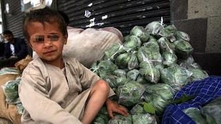 Che cos'è la Qat, la droga che due milioni di bambini prendono per non sentire la fame