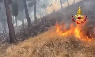 Palermo, incendi a Bellolampo: case evacuate, bloccati compattatori carichi di rifiuti