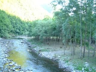 Dramma a Bologna, bimba di 7 anni muore annegata nel fiume Reno durante campus estivo