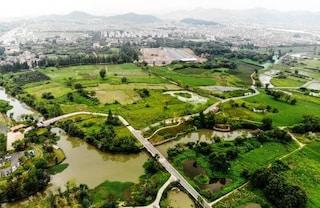 Unesco: 55 siti italiani patrimonio dell'umanità, ma la Cina ci raggiunge