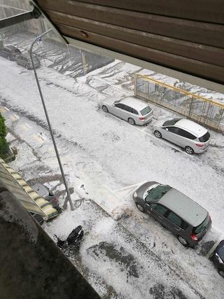 Maltempo, uragano a Bolzano: grandine e raffiche di vento, alberi abbattuti