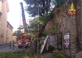 Genova, un violento nubifragio riapre la voragine in via Berno