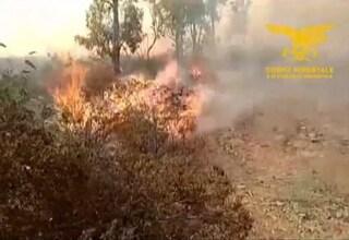 Fuoco tattico, la tecnica usata in Sardegna per combattere gli incendi col fuoco
