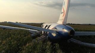 Aereo costretto a un atterraggio d'emergenza dopo aver colpito uno stormo di gabbiani