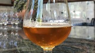 Pordenone, beve una birra durante furto in negozio: test del Dna lo inchioda 4 anni dopo