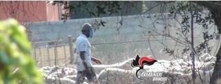 Brindisi, pastore africano ridotto in schiavitù: paga di 1,50 euro all'ora per 14 ore al giorno