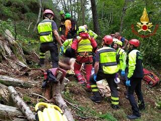 Trovata viva l'anziana dispersa in Valcellina: Pierina sopravvissuta tre giorni sola nei boschi