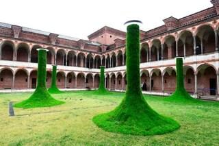 Università, tre atenei italiani nella top 200 mondiale. Domina Oxford, sorpresa Iran e Brasile