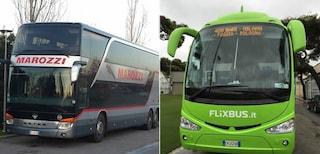 Puglia, bus Flixbus sostituiscono quelli Marozzi: accordo per viaggi a lunga percorrenza