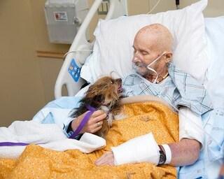 Veterano statunitense in fin di vita esprime ultimo desiderio: poter dire addio al suo cagnolino