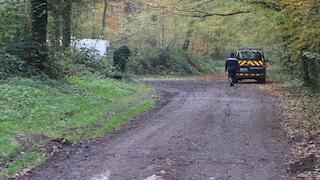 Francia, uccisa da un branco di cani mentre passeggia col suo in un bosco: era incinta