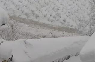 Bufera di neve in Alto Adige, valanga si abbatte su zona abitata: 6500 persone senza elettricità
