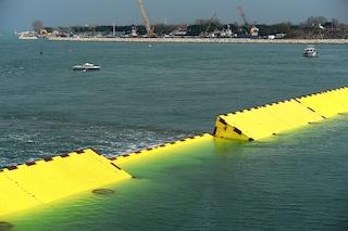 """Venezia, Zaia: """"Se il Mose avesse funzionato avrebbe bloccato le maree"""""""