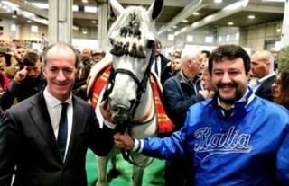 Salvini si fa i selfie con i cavalli mentre in Senato si parla del caso Ilva