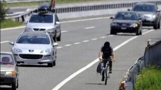 Firenze, ciclista in autostrada. Corsia d'emergenza usata come pista ciclabile