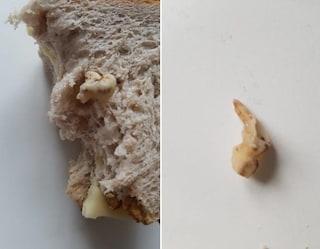 """Basilea, trova un dente nel pane alle noci: """"Una cosa del genere non può accadere"""""""