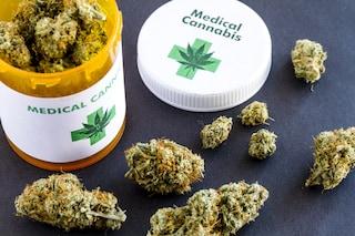 La Regione Sicilia fornirà gratuitamente cannabis terapeutica ai pazienti