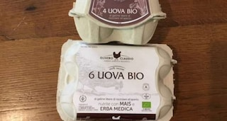 Uova biologiche contaminate da salmonella, Ministero della salute annuncia ritiro dai negozi