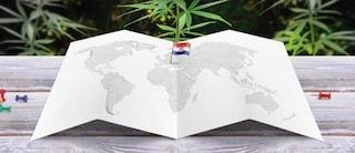 """Cannabis, la Croazia verso la legalizzazione: """"Fondamentale contro i cambiamenti climatici"""""""