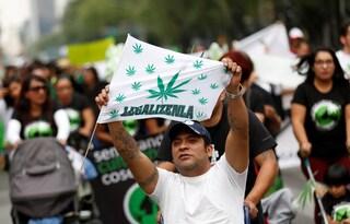 """Cannabis, il Messico a un passo dalla legalizzazione: """"È un diritto umano, ci perdono solo i narcos"""""""
