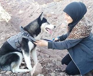 """Afghanistan, uccidono il suo husky mentre lo porta a passeggio: """"Una donna non può avere un cane"""""""