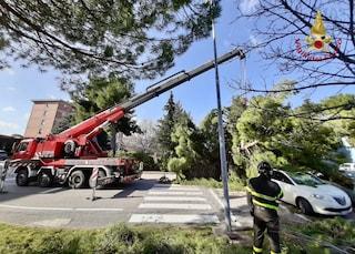 Vento fortissimo a Bologna, 86enne cade e viene travolto da una lastra di plexiglas: è grave