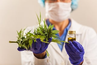 No, la cannabis non cura il Coronavirus